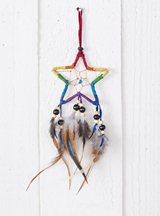 Star Suede Dreamcatcher